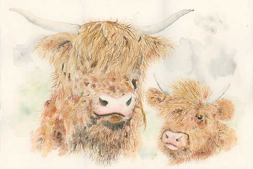Highland Cow and Calf - Original Painting