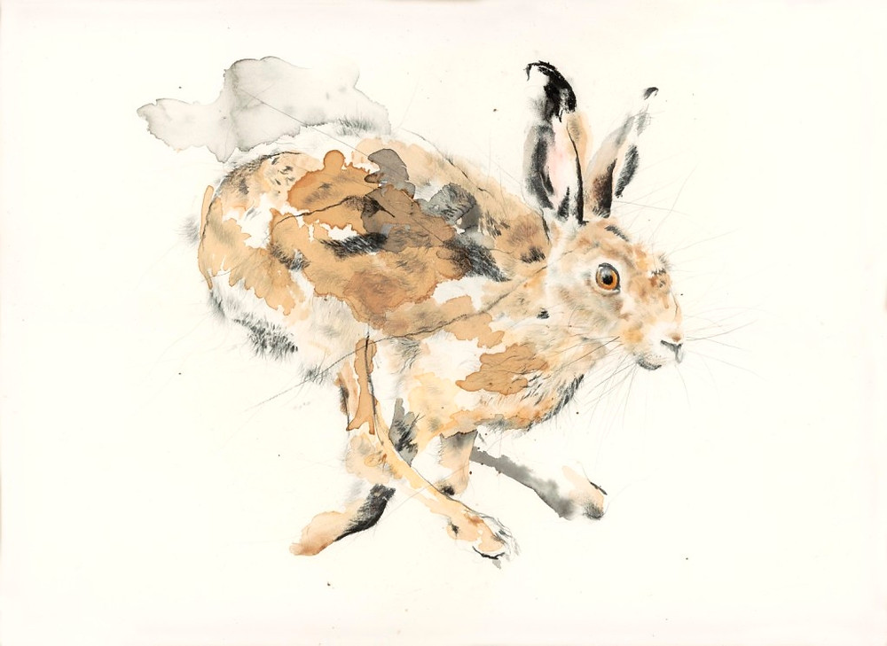 Both of these have been sold by Gallerina in Darlington, but watch our for more hares in 2015!