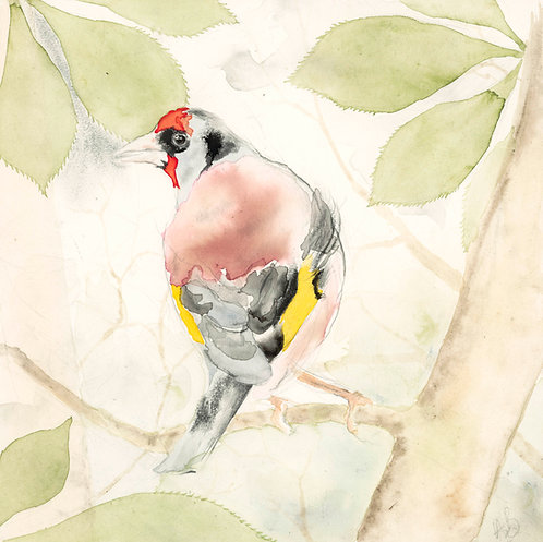 Goldfinch - Original Painting