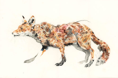 Young Fox - Original Painting