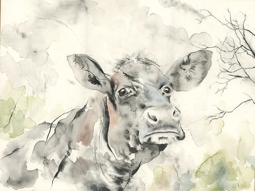 Head of a Cow - Original Painting