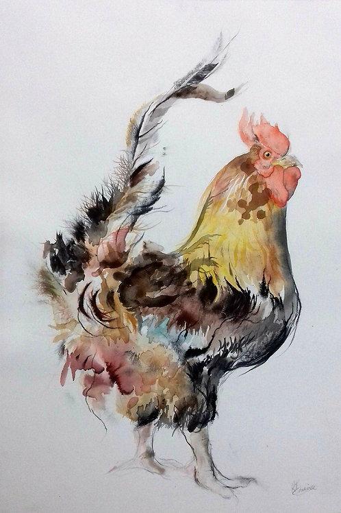 Cockerel II - Original Painting