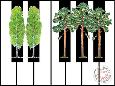 Две берёзы и тёмный лес
