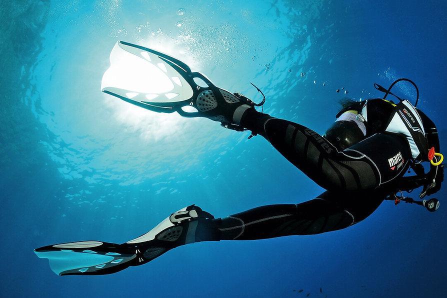 Presentation-Dive Image.jpg