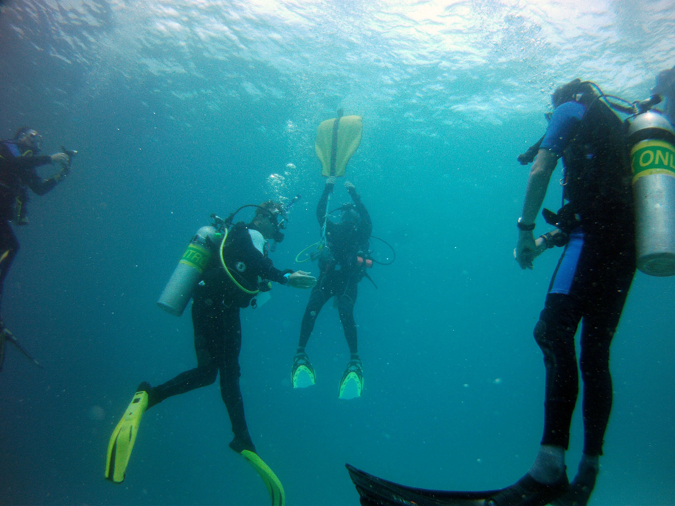 Search & Recovery Diver
