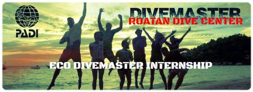 Roatan Dive Center