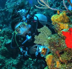 Roatan Dive Center Underwater