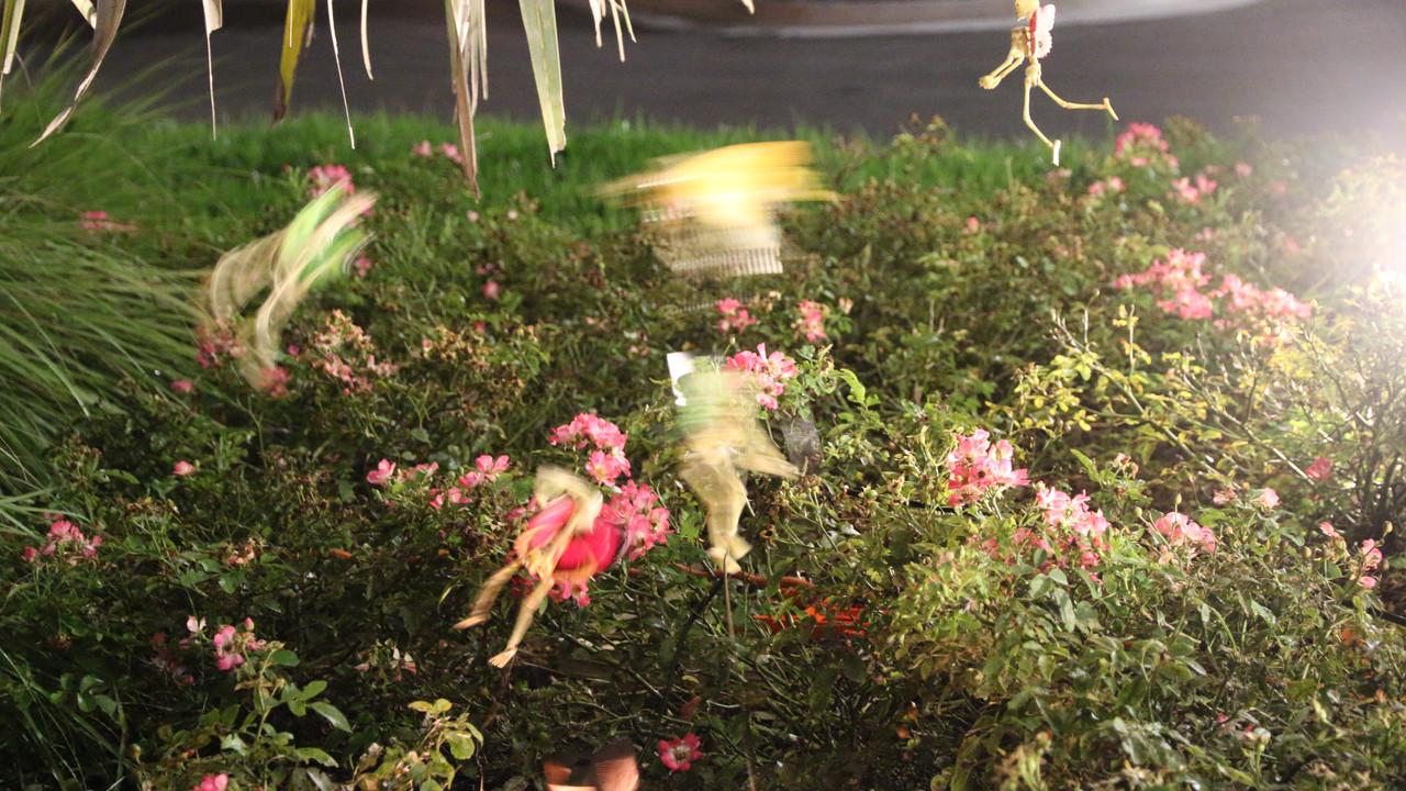 Skeleton Fairy Garden
