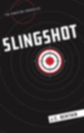 Slingshot_FINAL_edited.jpg