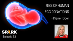 The Rise of Human Egg Donations