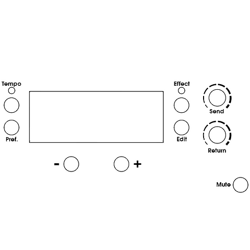 DSP Display Effects, Metronome, Mute and Tuner