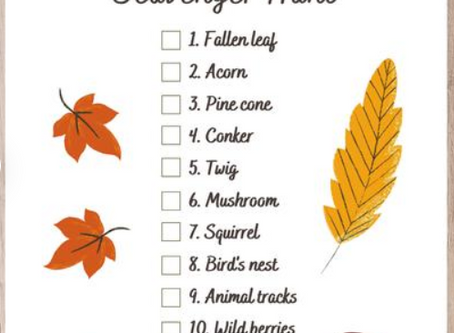 Early Years Autumn Hunt!