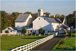 Lancaster White Farm