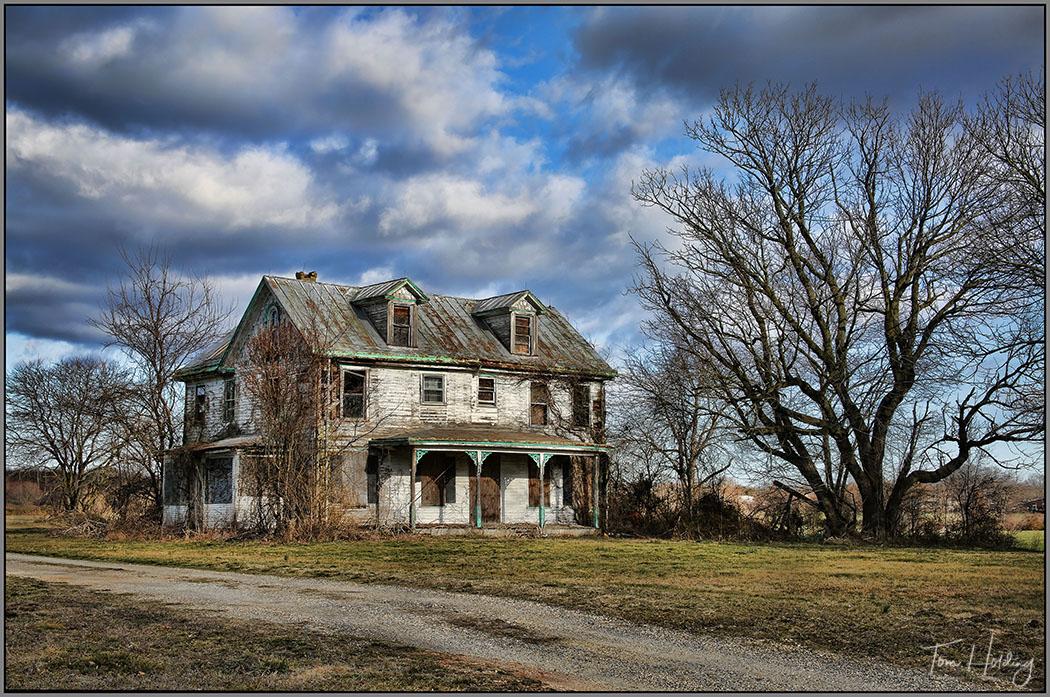 Abandoned Homestead