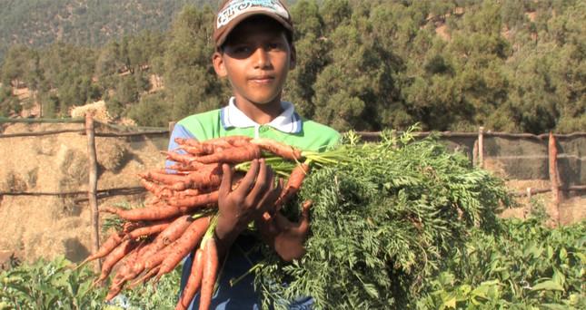 Première récolte du jardin agro écologiq