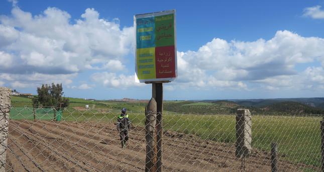 Mon Village Ma Vie.jpg