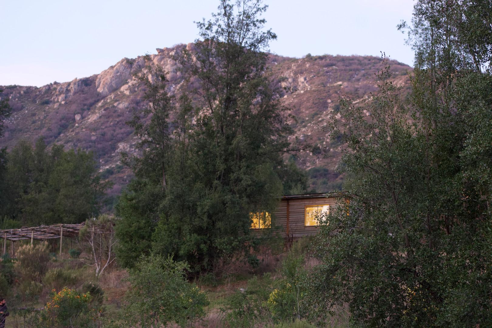 Wood Cabin - Outside