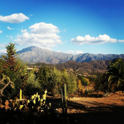 La Linda Loma garden