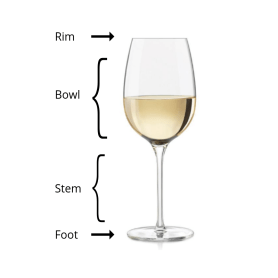 Wine glass with diagram of Wine Glass Anatomy. The very top edge is the rim. The bowl goes from the rim to the stem. The stem is the tubular glass that is meant for holding the wine glass with your hands. The foot is the flat disc that the wine glass stands on when placed on a table.
