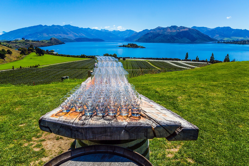 Glasses on a wood slab overlooking a vineyard, bay, and mountains in New Zealand.