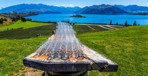 Head Down Under for New Zealand Sauvignon Blanc