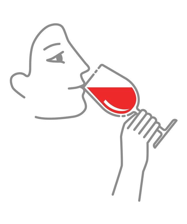Illustration of fourth step for tasting wine which is to sip wine from a wine glass.
