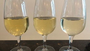 How does Chardonnay compare to Sauvignon Blanc?