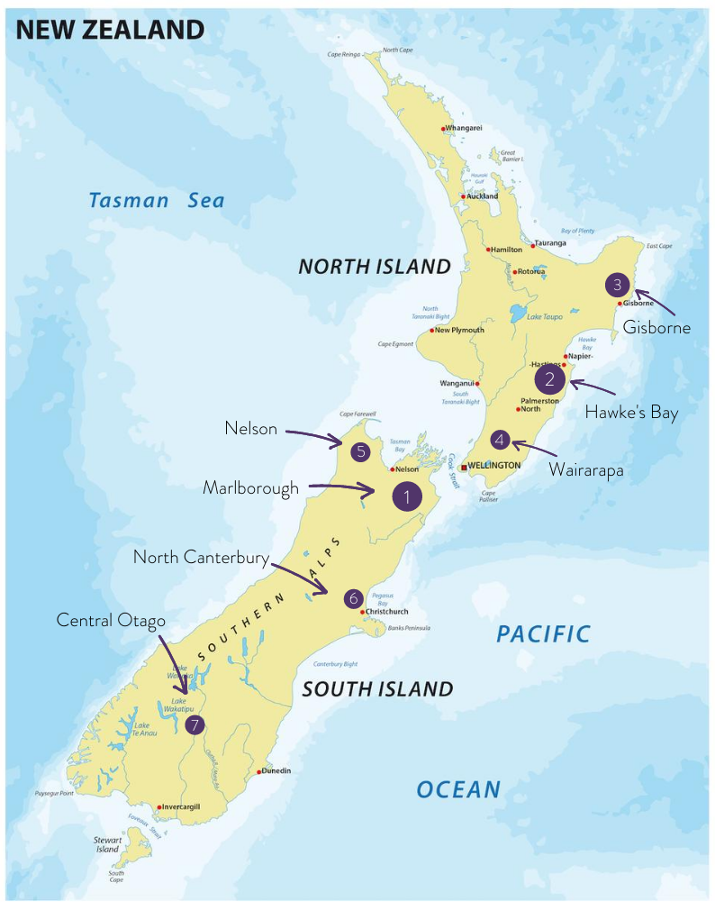 New Zealand Map shows the 7 Regions for Sauvignon Blanc.