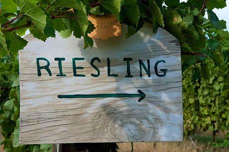 Riesling Vineyard sign