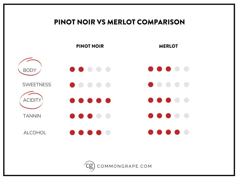 Chart comparing Pinot Noir and Merlot across body, sweetness acidity, tannin and alcohol.