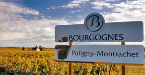 Exploring the Burgundy Wine Region