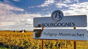 Exploring the Burgundy Wine Region