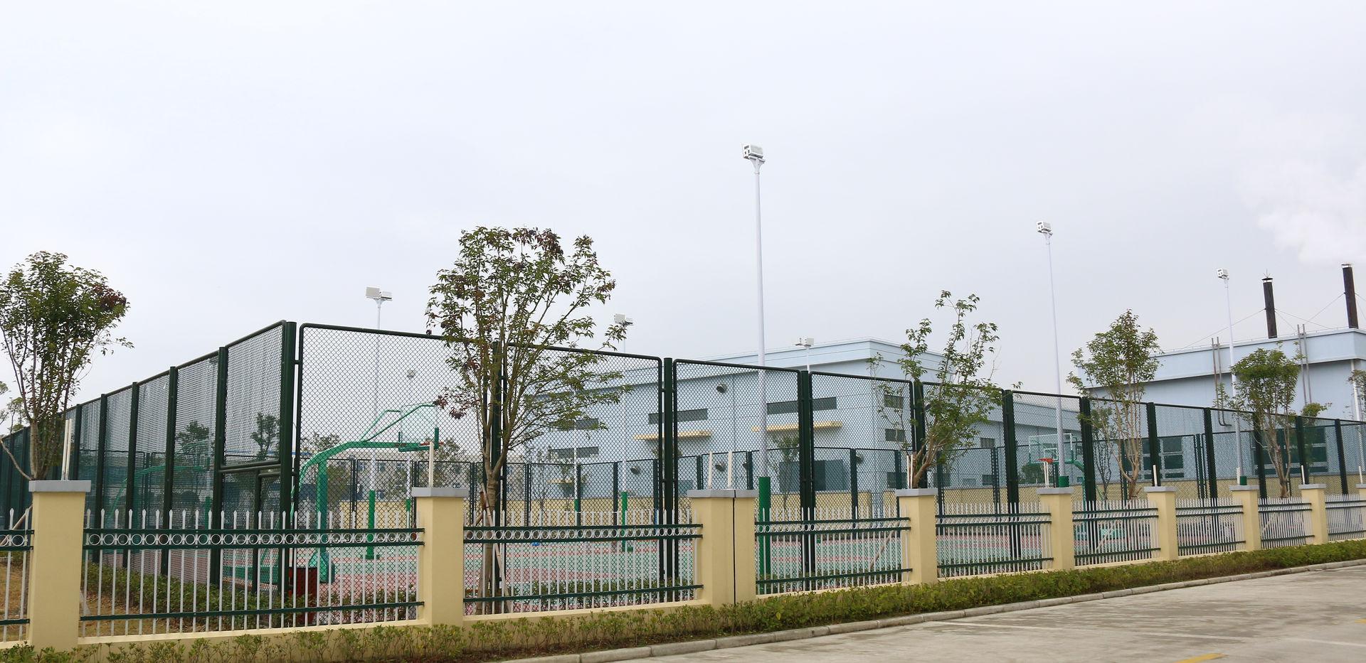 公司篮球场.JPG