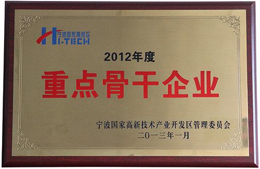 2012年度重点骨干企业