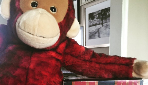 What to Bring to a Real Estate Closing: A Monkey or an Attorney?