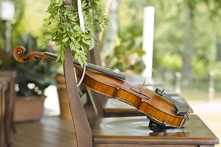 Violin Electria.jpeg