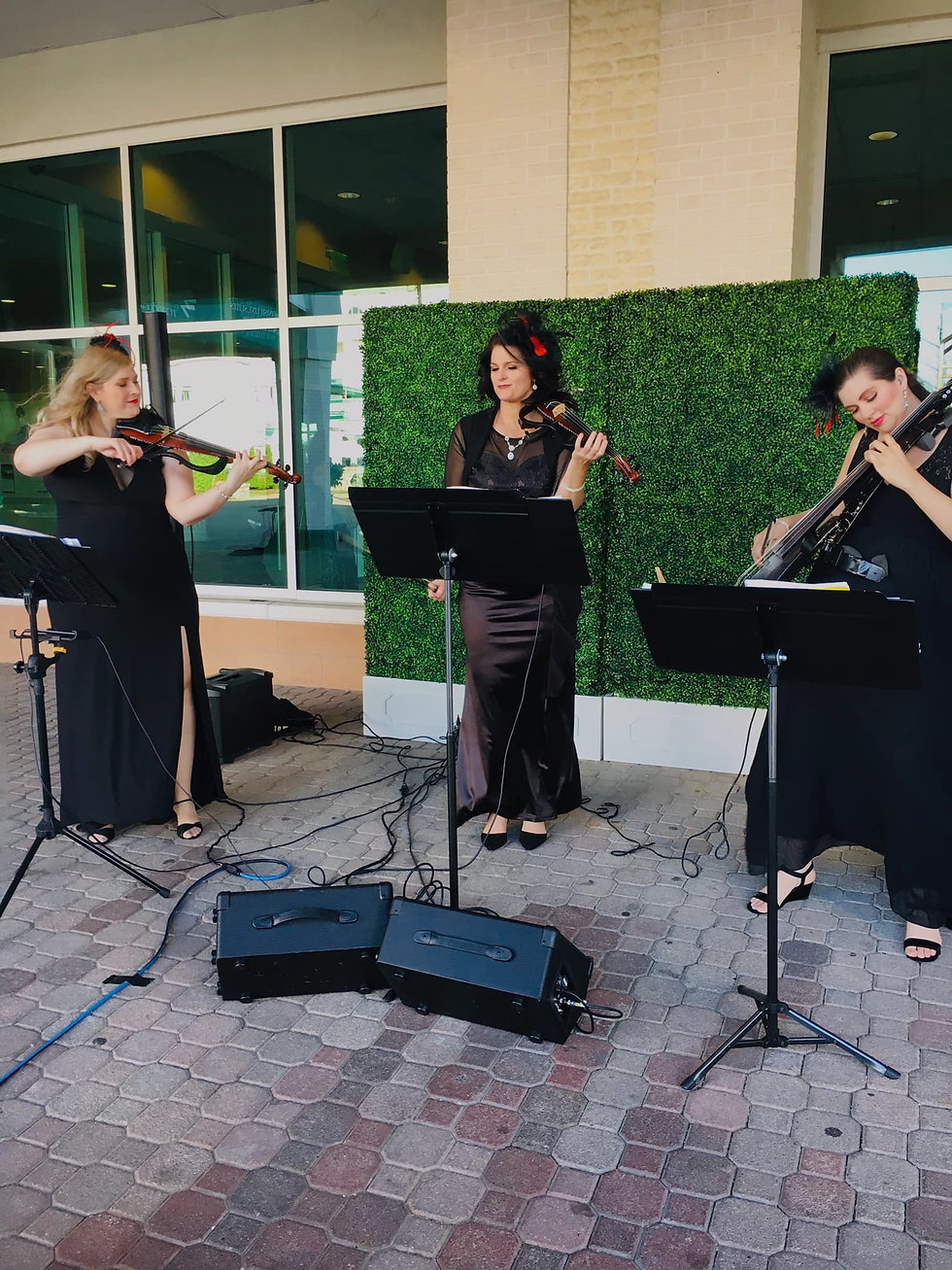 Electria - Electric String Trio Louisville KY