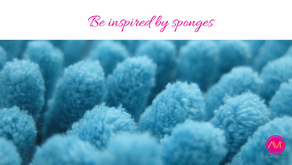 Be inspired by sponges