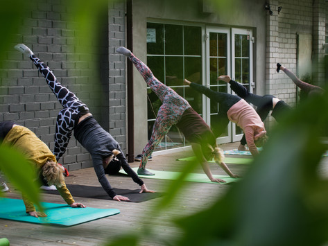 How to Fill Your Yoga Class with Dream Students