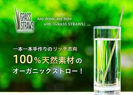 glass straws.jpg