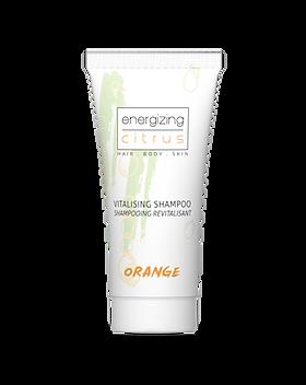 shampoo.png