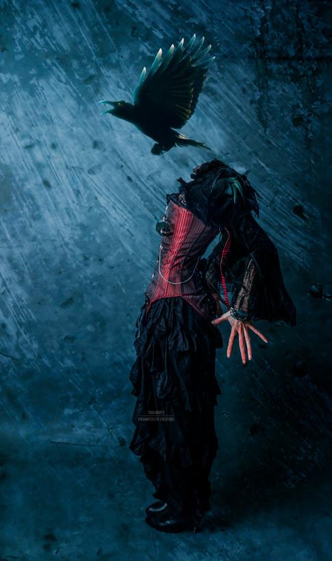 crow head fly