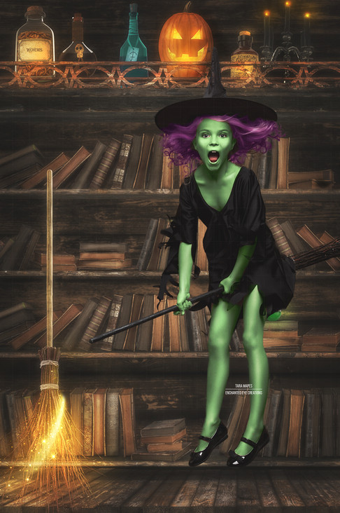 Witch Bookcase 2