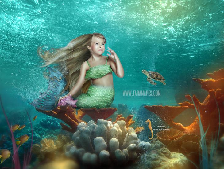 Mermaid on Coral