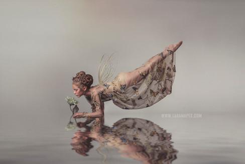 butterfly-dress-wm.jpg