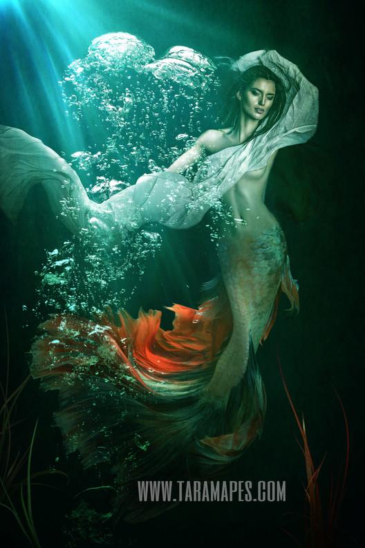 Dark Mermaid Underwater 2 PSD Tara Mapes