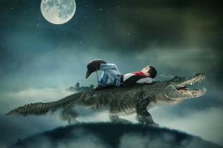 AlligatorCowboy