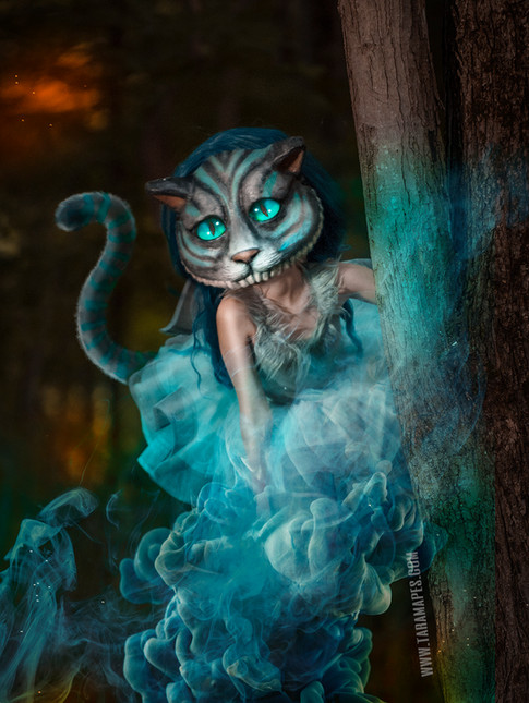 Cheshire tree social media