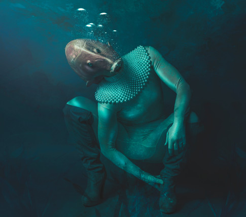 fish squat nowm