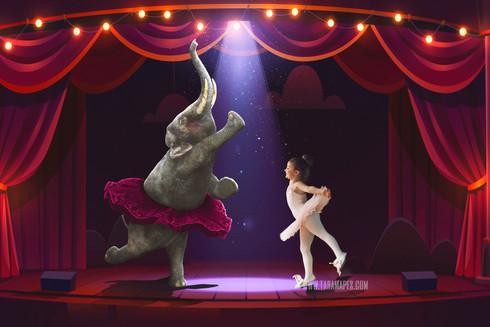 Elephant Ballerina Tara Mapes